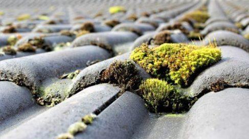 roof-wash-kansas-city KS